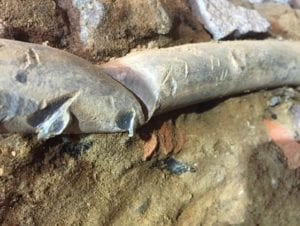 Old lead water line