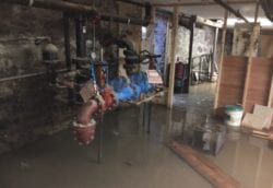 frozen pipes burst and flood basement
