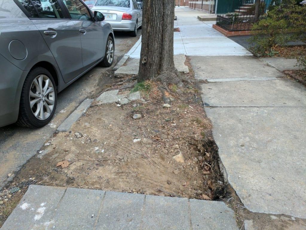 Insurance company denies due to neighbors fresh concrete